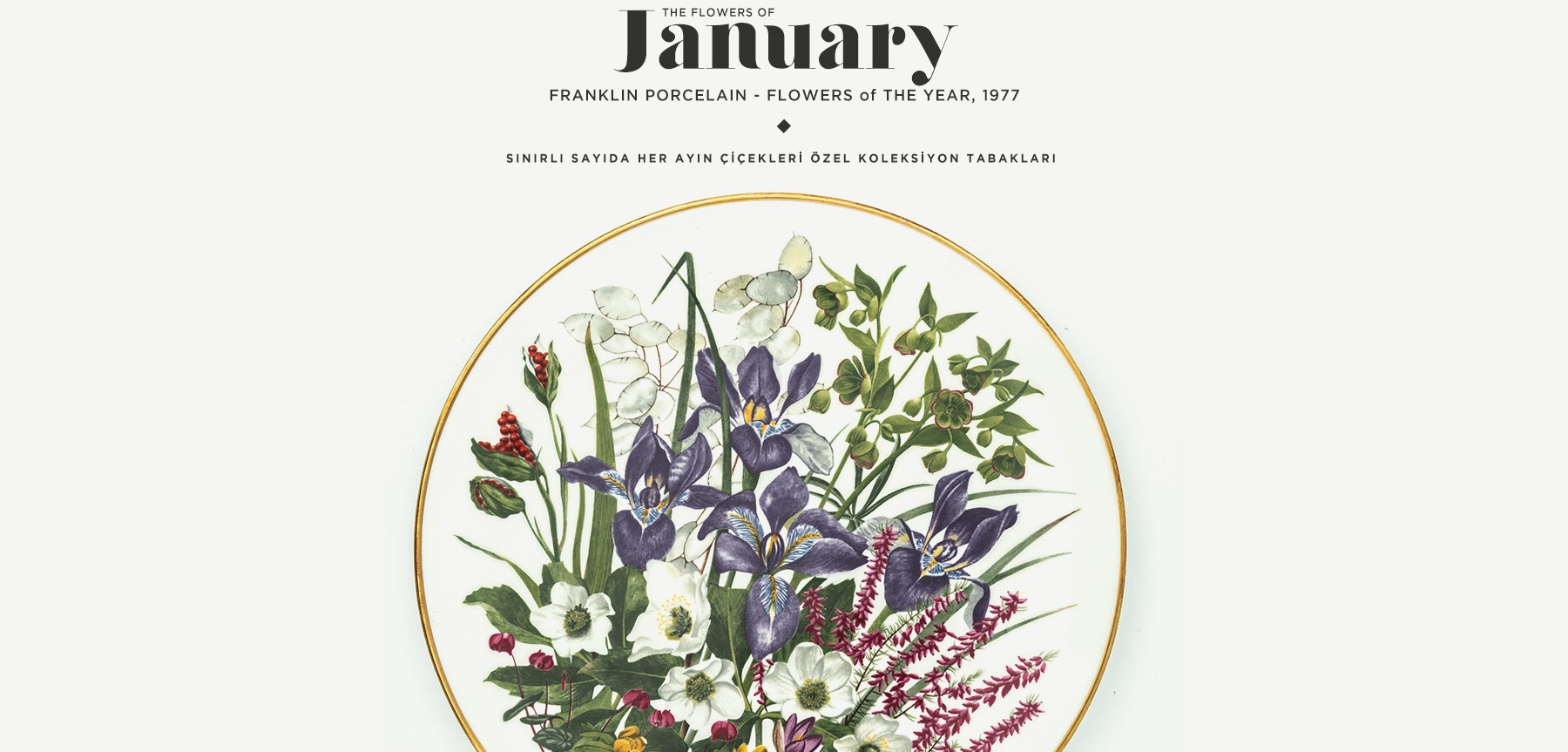 Ocak'ta Açan Çiçekler The Flowers Of January'in resmi